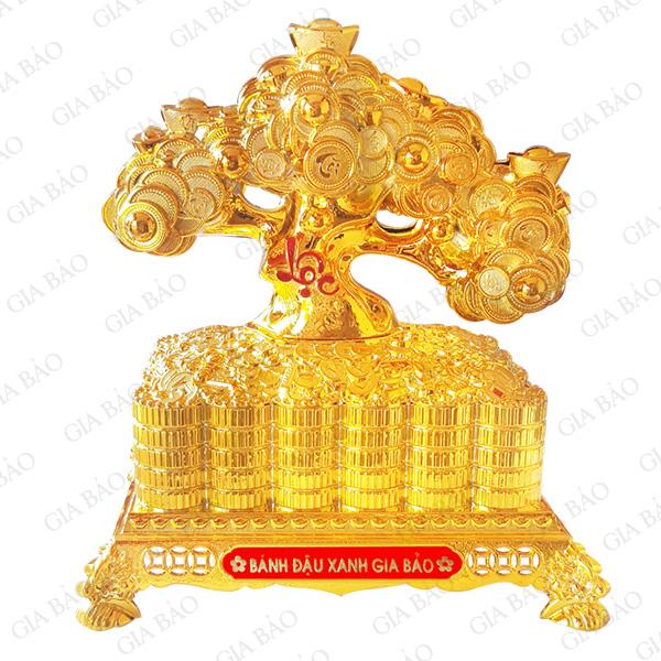 Hộp cây tiền vàng